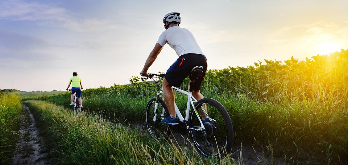 Katero kolo izbrati za kolovozne poti?
