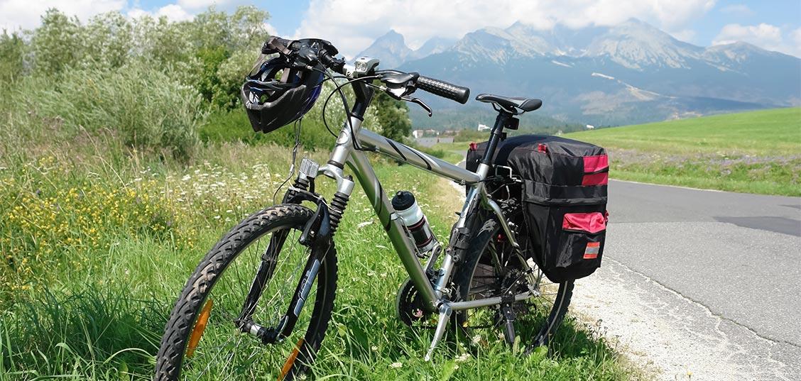 Katero kolo kupiti, če nameravate potovati?